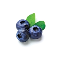 Blueberry  Dessert Mix: If you love Blueberries you will be in blueberry heaven.